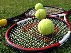 Istoria Cupei Davis